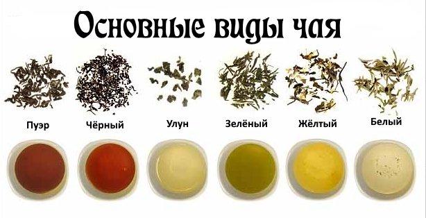 Основные виды чая