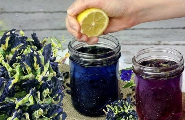 При добавлении лимона синий чай меняет свой цает на пурпурный