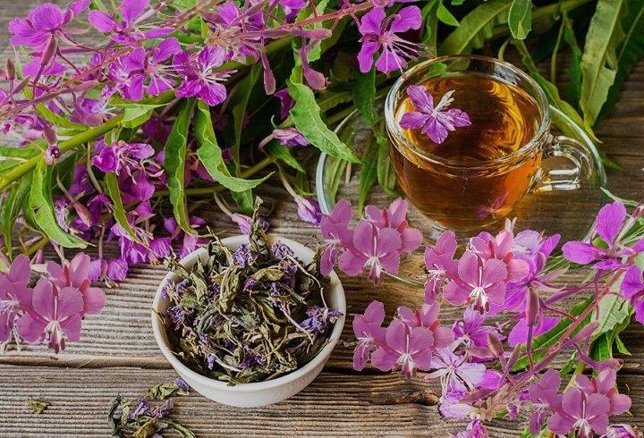 Цвет завареного настоя копорского чая