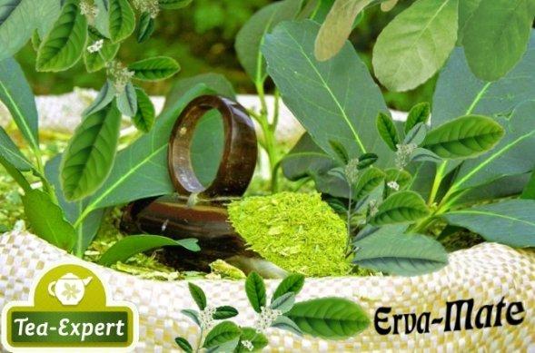 Мешок с Мате и листья растения падуб парагвайский