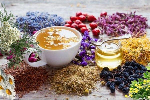 Монастырские травы и чай