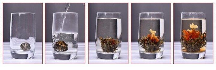 Этапы расскрытия бутона цветущего чая