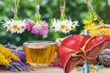 Монастырский чай от гепатита