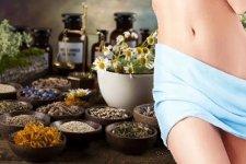 Монастырский чай от молочницы: состав, свойства сбора, как заваривать
