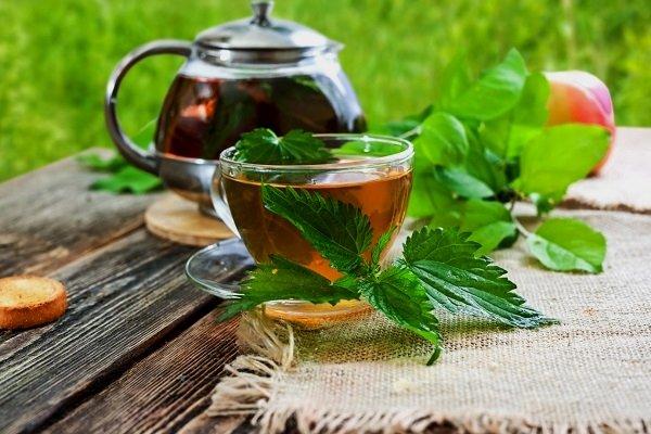 Заваренный чай из крапивы в чанике и чашке